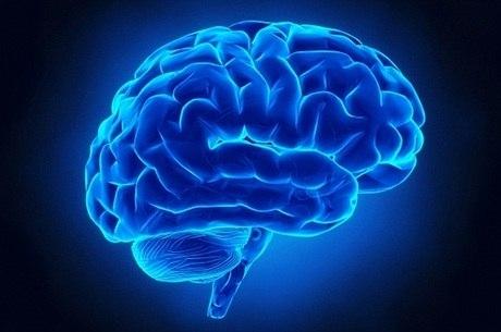 Dia Mundial do Cérebro é comemorado nesta quinta (22)